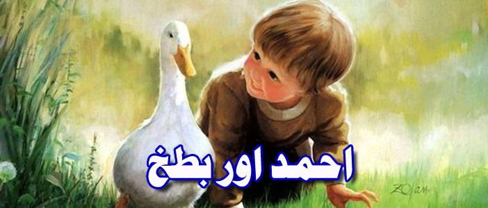 احمد اور بطخ