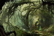 خونی جنگل